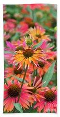 Echinacea Purpurea Orange Passion Beach Towel