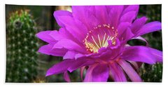 Beach Towel featuring the photograph Echinopsis In Hot Pink  by Saija Lehtonen