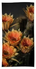 Echinopsis Beach Towel