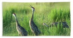 Sandhill Cranes In A Misty Meadow  Beach Towel