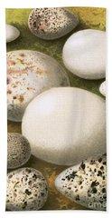 Eggs Beach Towel