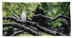 Egret Able Beach Towel by Ray Congrove