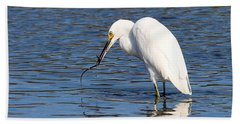Beach Towel featuring the photograph Egret Eating Eel 4 by William Selander