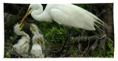Majestic Great White Egret Family Beach Sheet by Bob Christopher