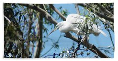 Egret In Rookery Beach Sheet