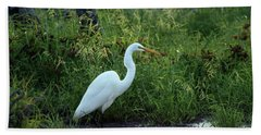 Egret In The Early Morning Beach Towel