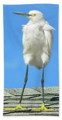 Egret Focused And Poised Beach Towel