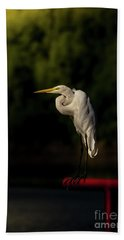 Beach Towel featuring the photograph Egret On Deck Rail by Robert Frederick