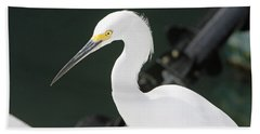 Beach Towel featuring the pyrography Egret On The Pier by Shoal Hollingsworth