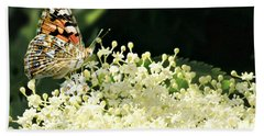 Elderflower And Butterfly Beach Towel