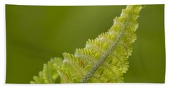 Elegant Fern. Beach Towel
