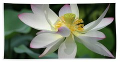 Elegant Lotus Beach Towel