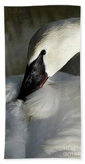 Beach Towel featuring the photograph Elegant Trumpeter Swan by Sue Harper