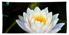 Elegant White Water Lily Beach Sheet
