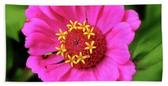Elegant Zinnia Flower Pink Tones Beach Sheet