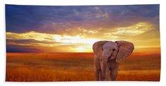 Elephant Baby Beach Towel