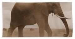 Elephant Dust Beach Towel