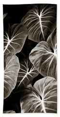 Elephant Ears On Parade Beach Sheet by Marilyn Hunt