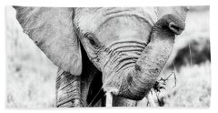 Elephant Portrait In Black And White Beach Sheet