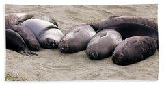 Elephant Seals Beach Sheet