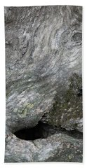 Beach Towel featuring the photograph Elephant Trunk by Dale Kincaid
