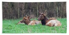 Beach Towel featuring the photograph Elk Relaxing by Paul Freidlund