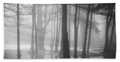 Ellacoya Fog - January Thaw Beach Towel