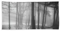 Ellacoya Fog - January Thaw Beach Sheet