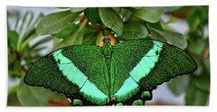 Emerald Swallowtail Butterfly Beach Sheet by Ronda Ryan