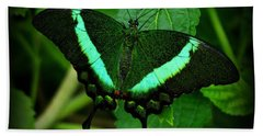 Emerald Swallowtail Beach Sheet