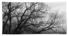 Beach Towel featuring the photograph Enchanted Forest by Ana V Ramirez