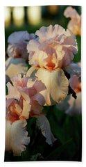 End Of Day Pink Irises 6702 H_2 Beach Sheet