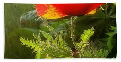 Red Poppy At Sunset Beach Towel