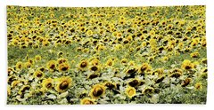 Beach Towel featuring the photograph Endless Sunflowers by Jim DeLillo