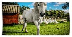 English Gypsy Horse Beach Towel