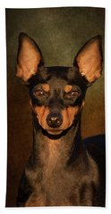 English Toy Terrier Beach Towel