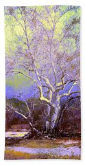 Enhanced Cottonwood Tree Beach Sheet by M Diane Bonaparte