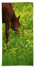 Beach Sheet featuring the photograph Enjoying The Wildflowers by Karol Livote