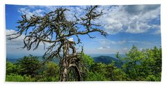Ent At The Top Of The Hill - Color Beach Sheet by Joni Eskridge