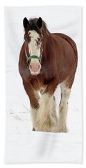 Beach Towel featuring the photograph Equus Caballus.. by Nina Stavlund
