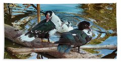 Estuary Ducks Beach Towel