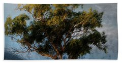 Eucalyptus Beach Sheet
