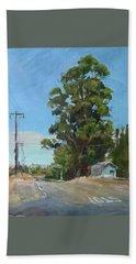 Eucalyptus Tree Near Schellville, Ca Beach Towel