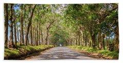 Eucalyptus Tree Tunnel - Kauai Hawaii Beach Sheet by Brian Harig