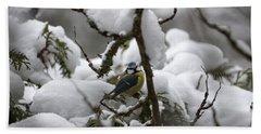 Eurasian Blue Tit In Winter 22 Beach Sheet