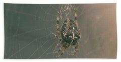European Garden Spider B Beach Sheet