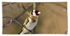 European Goldfinch 2 Beach Sheet