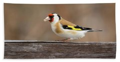 Beach Towel featuring the photograph European Goldfinch In Kenosha by Ricky L Jones