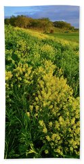 Evening At Glacial Park In Mchenry County Illinois Beach Towel