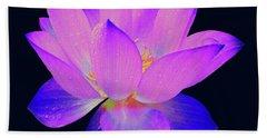 Evening Purple Lotus  Beach Towel